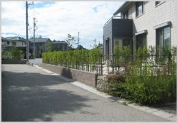 歩道に面する植栽